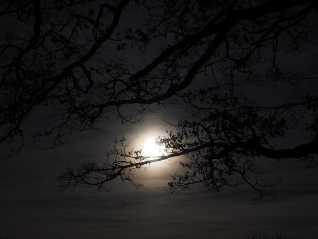 moon-1024914_1920