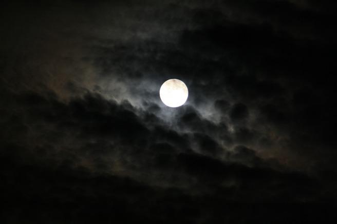 moon-325083_1920